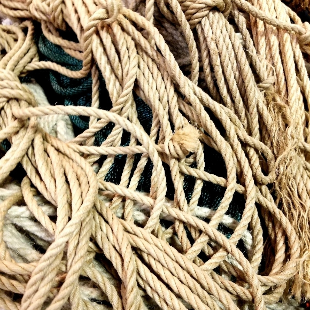 (@slc_rope) Cover Image