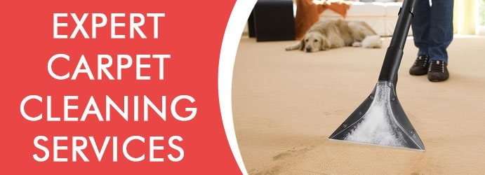 Carpet Cleaning Sunshine Coast (@carpetcleaningsunshine) Cover Image