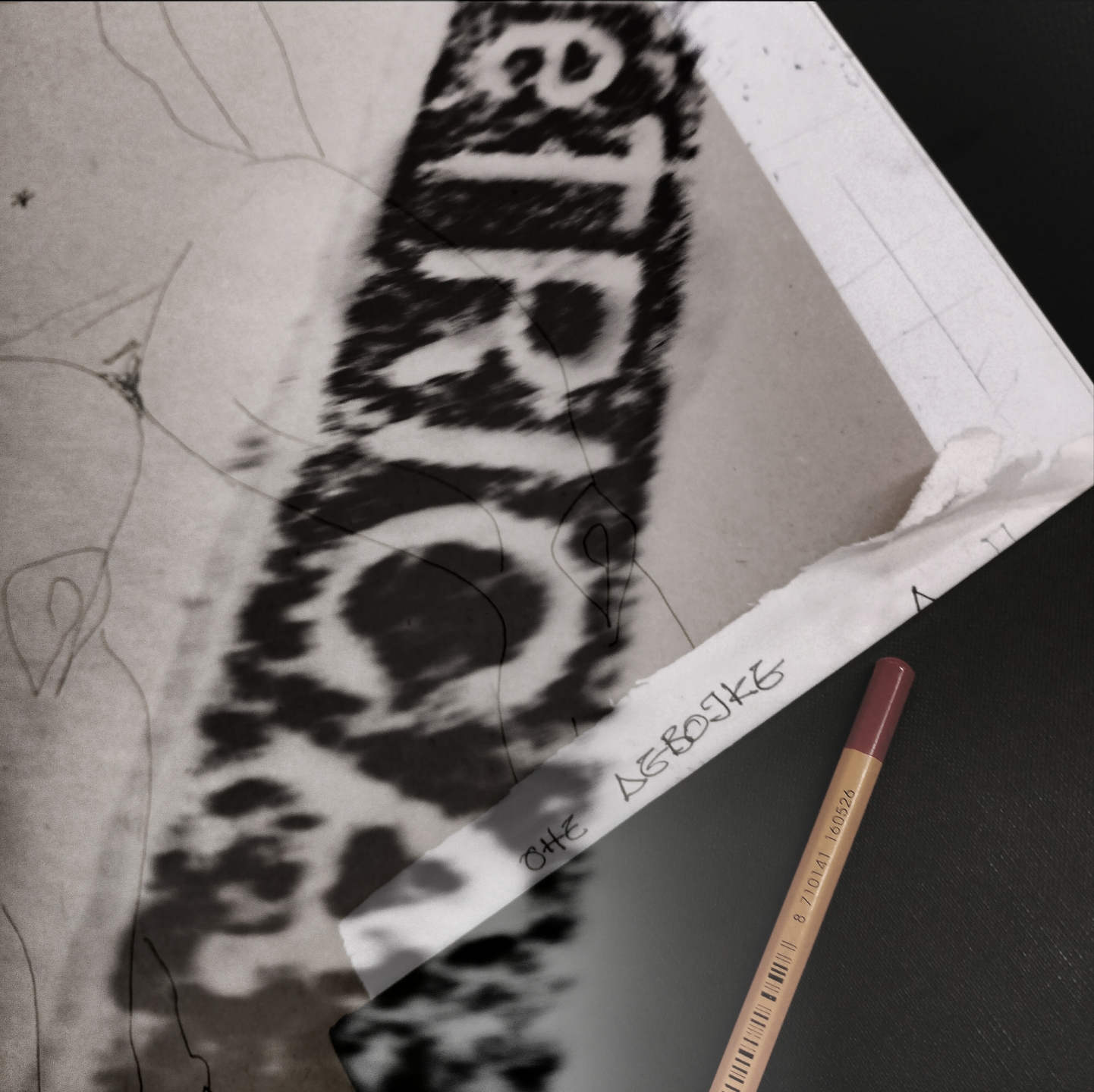 Rosa Gómez (@aximetrica) Cover Image