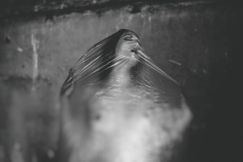 Trisomie Pornographique (@trisoporn) Cover Image