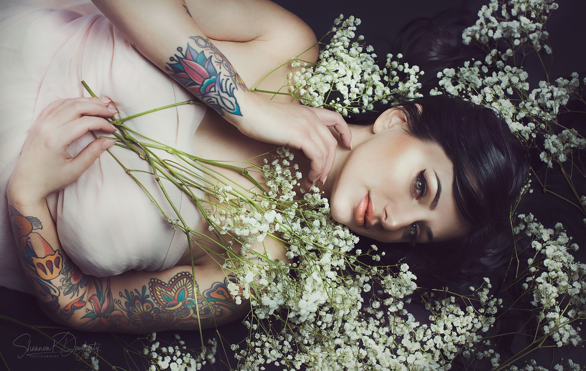 Shannon K Dougherty (@shannonkdougherty) Cover Image