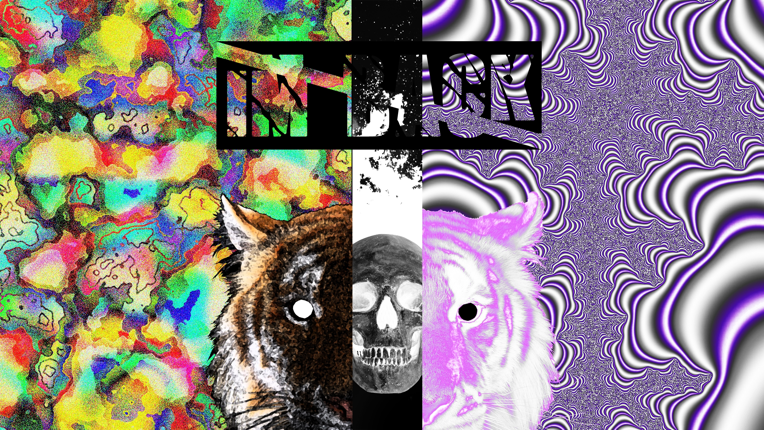 Chafik.Design (@chafikdesign) Cover Image