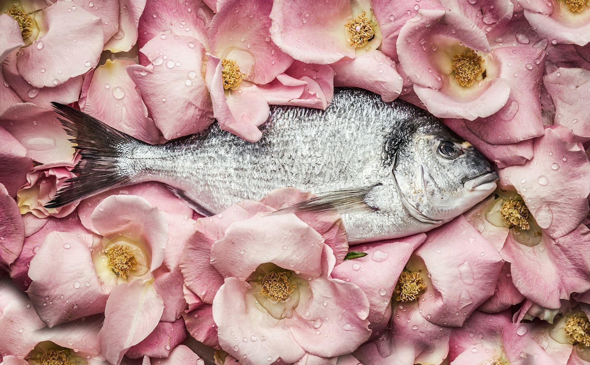 Violeta Gladstone (@floraldesigner) Cover Image