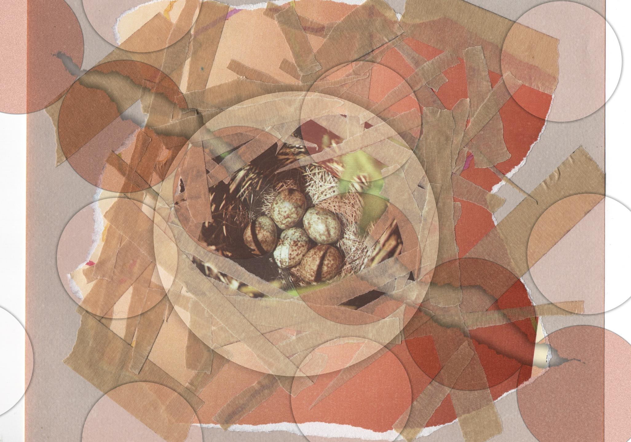 Vague Stitch Collage  (@vaguestitchcollage) Cover Image
