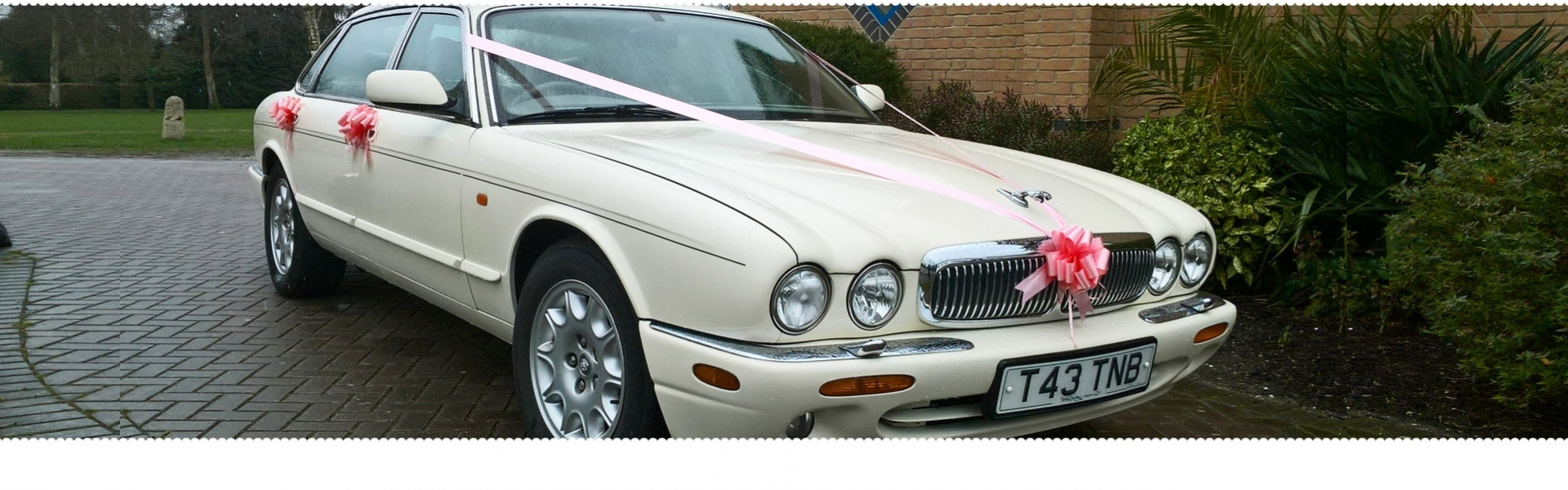 Hi-Profile Limousines and Wedding Cars (@hiprofilelimousineswedding) Cover Image