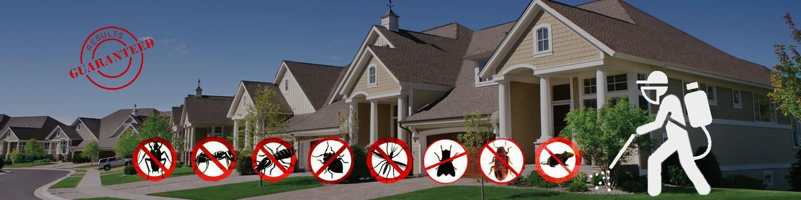 Black Horse Pest Control Company (@blackhorsepestcontrol) Cover Image