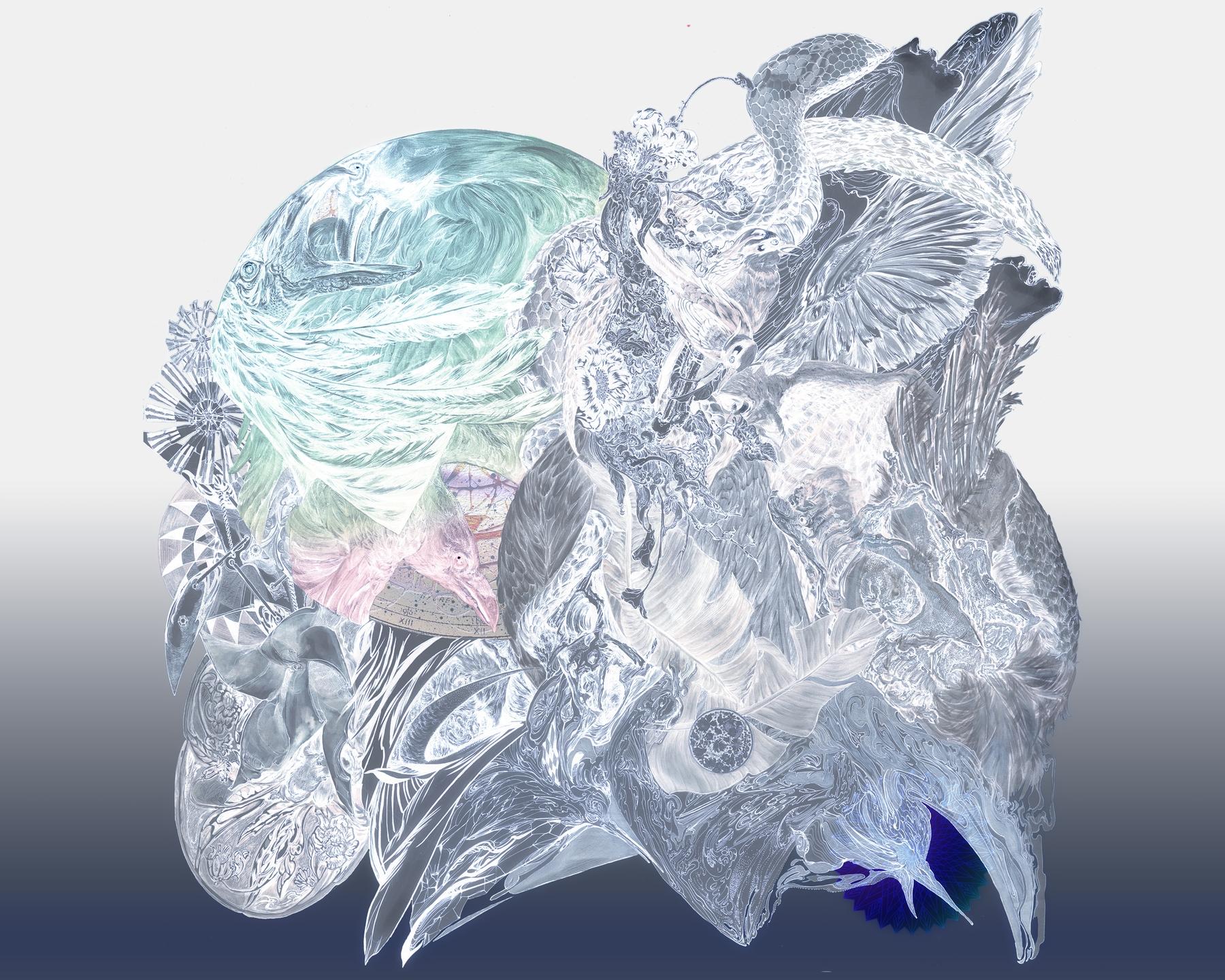 Dali Wu (@daliwu) Cover Image