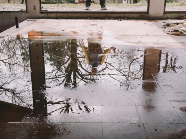 Water Damage Restoration Near Me (@trusteddamage12) Cover Image