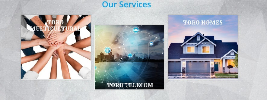 TORO Enterprises Corp (@toroenterprisescorp) Cover Image