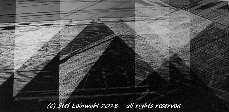 Stef Leinwohl (@stef_wohl) Cover Image