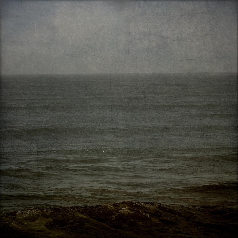 Wendy Garfinkel-Gold (@wendygarfinkelphotography) Cover Image