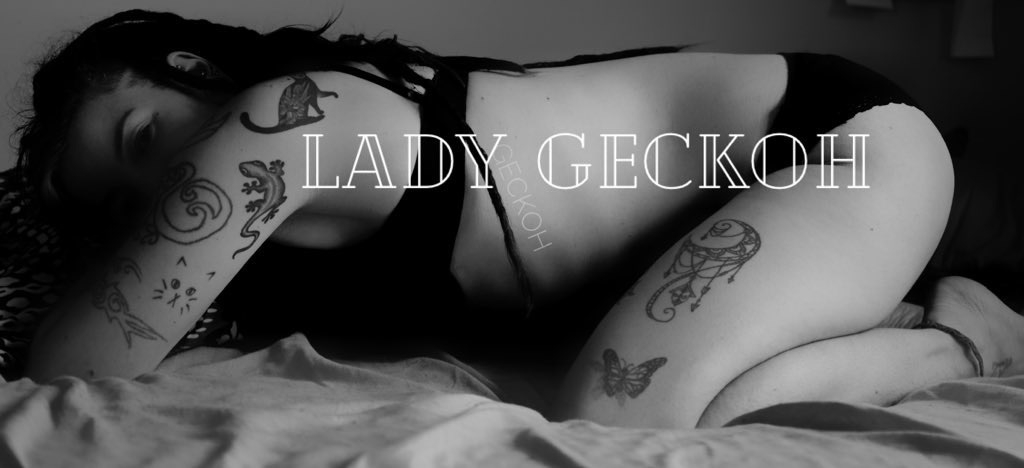 Geckoh (@geckoh) Cover Image