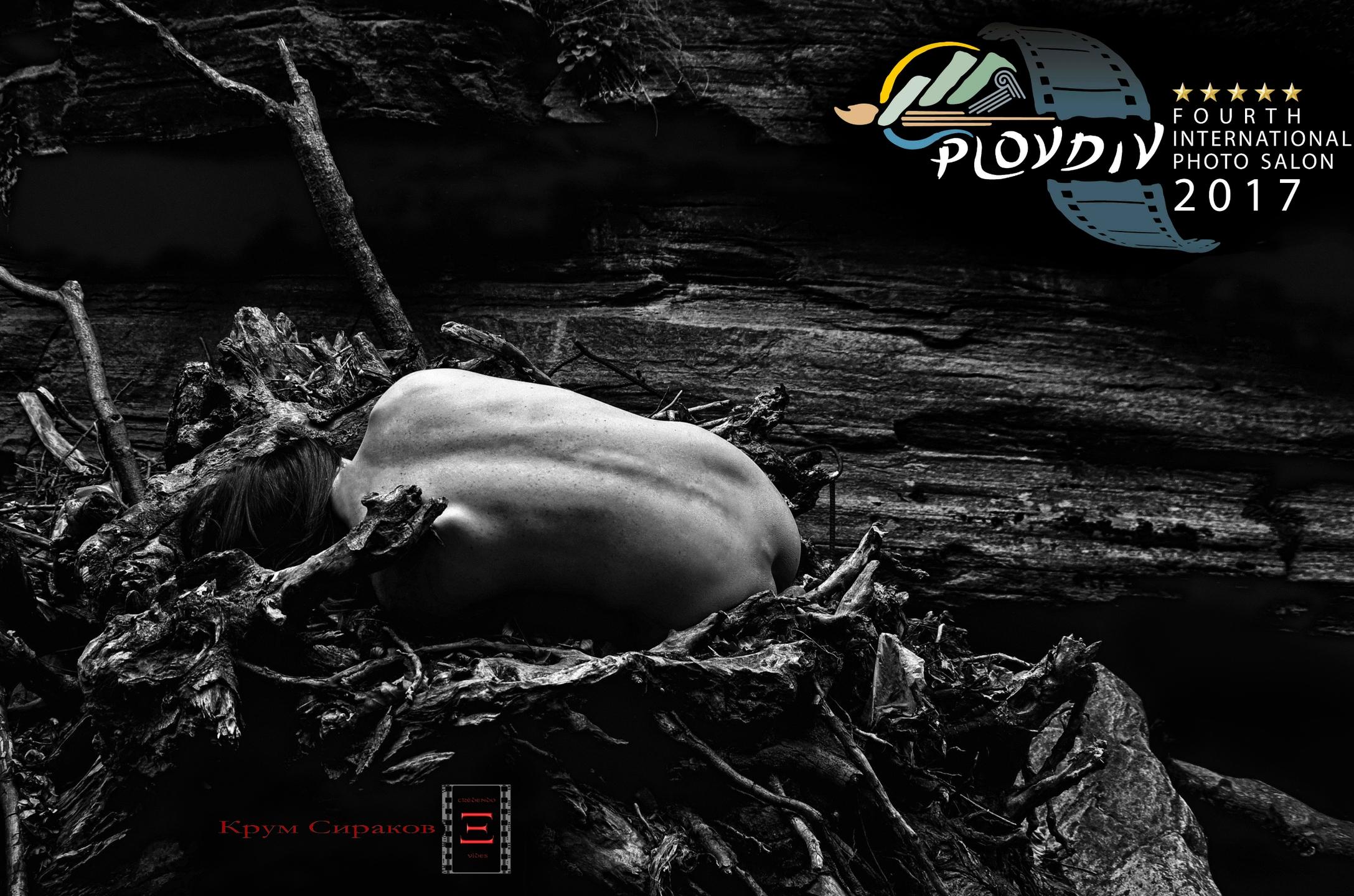 U (@krumosaurus) Cover Image