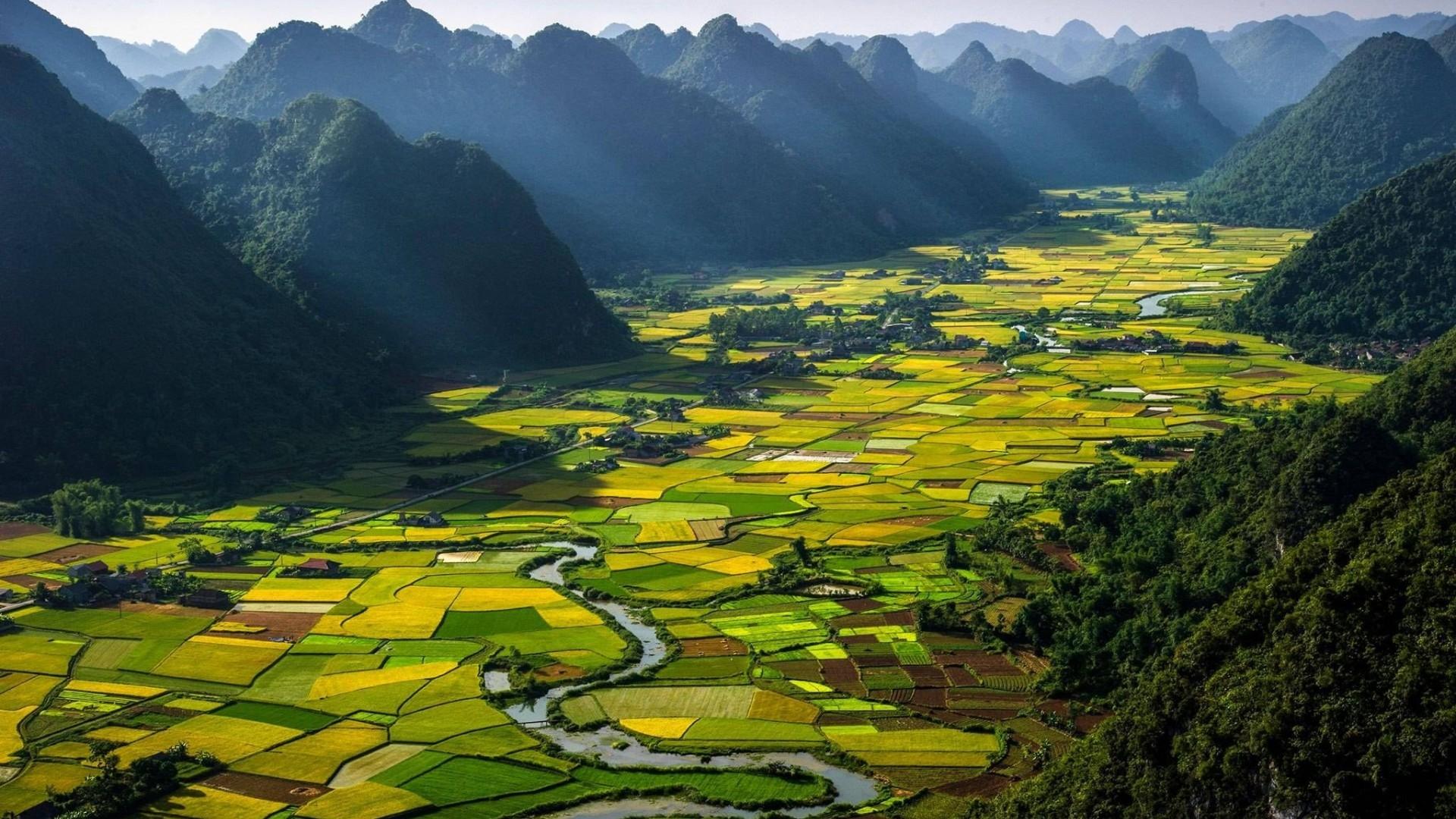 Vietnam Summary (@vnsummary) Cover Image