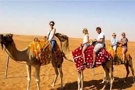 VIP desert safari Dbai (@desert123) Cover Image