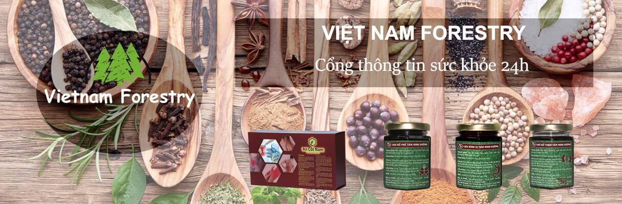 Việt Nam Forestry (@vietnamforestry) Cover Image
