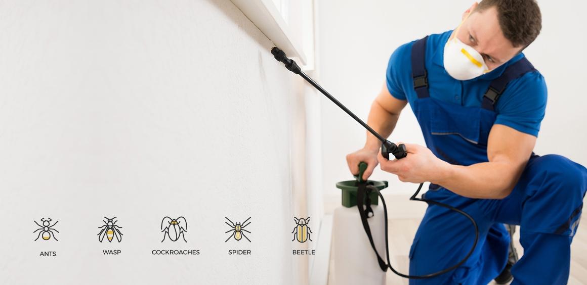 Altun böcek ilaclama (@bocekilaclama1) Cover Image