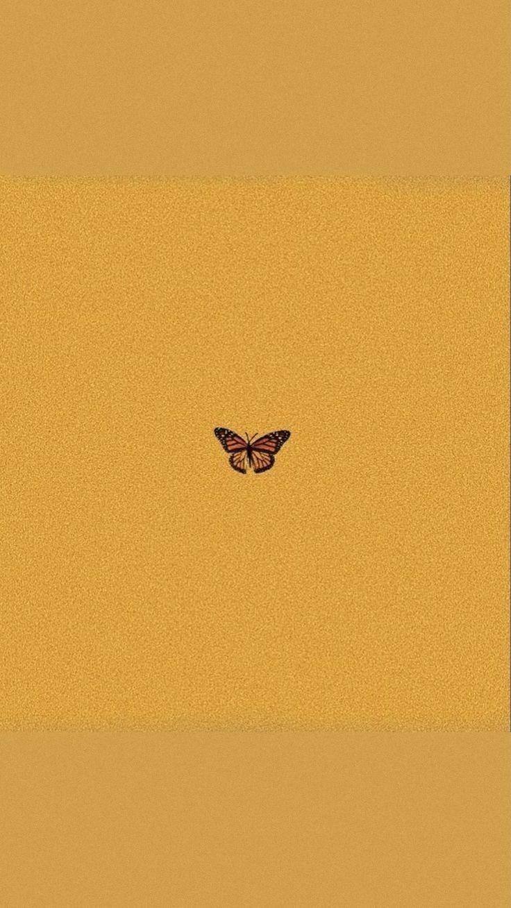 Fathia (@fathiya) Cover Image