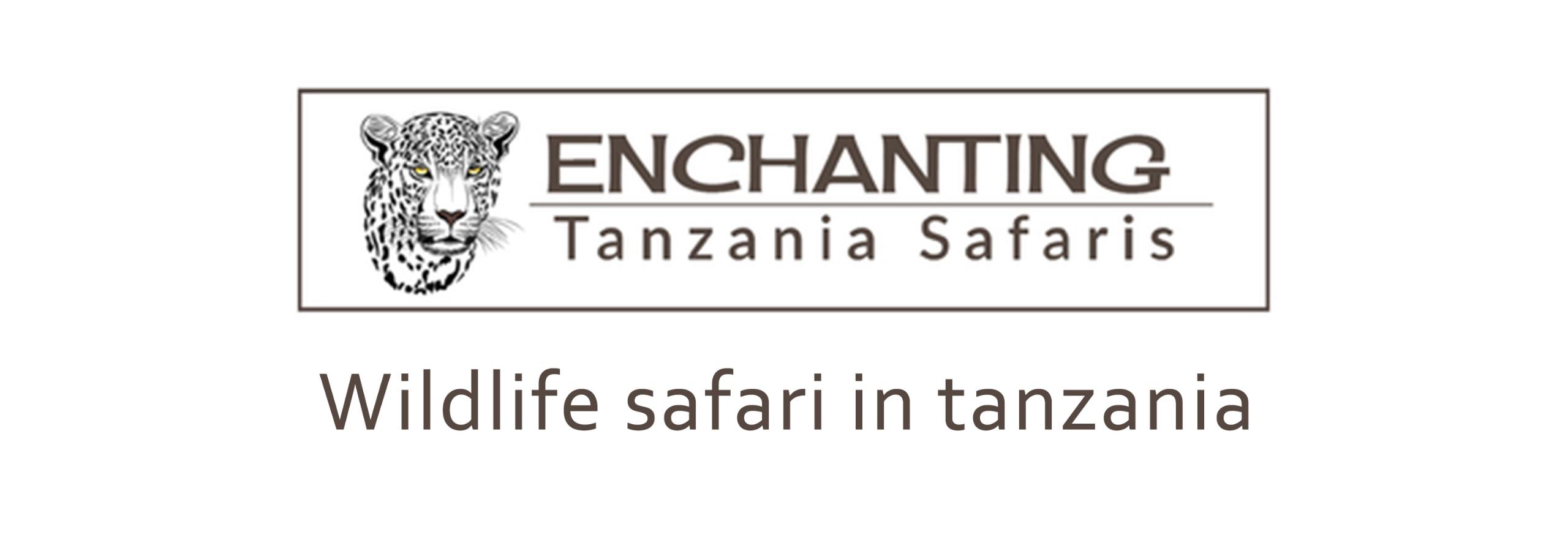 enchanting-tanzania-safaris (@etsarusha) Cover Image