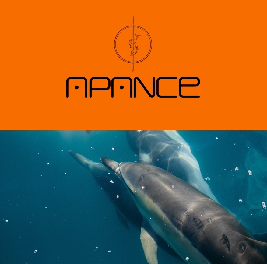 Apance (@apance) Cover Image