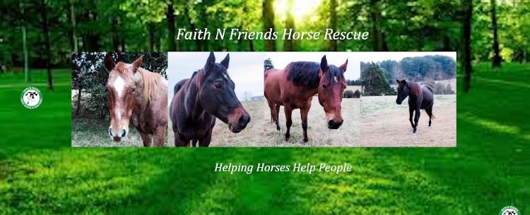 Faith N Friends Hors (@faithnfriends) Cover Image