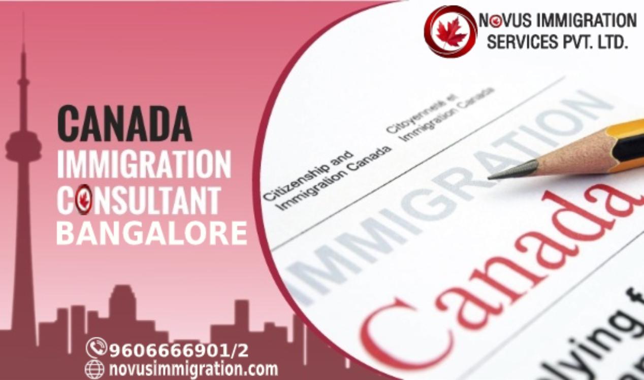 Novus Immigration (@novusimmi) Cover Image