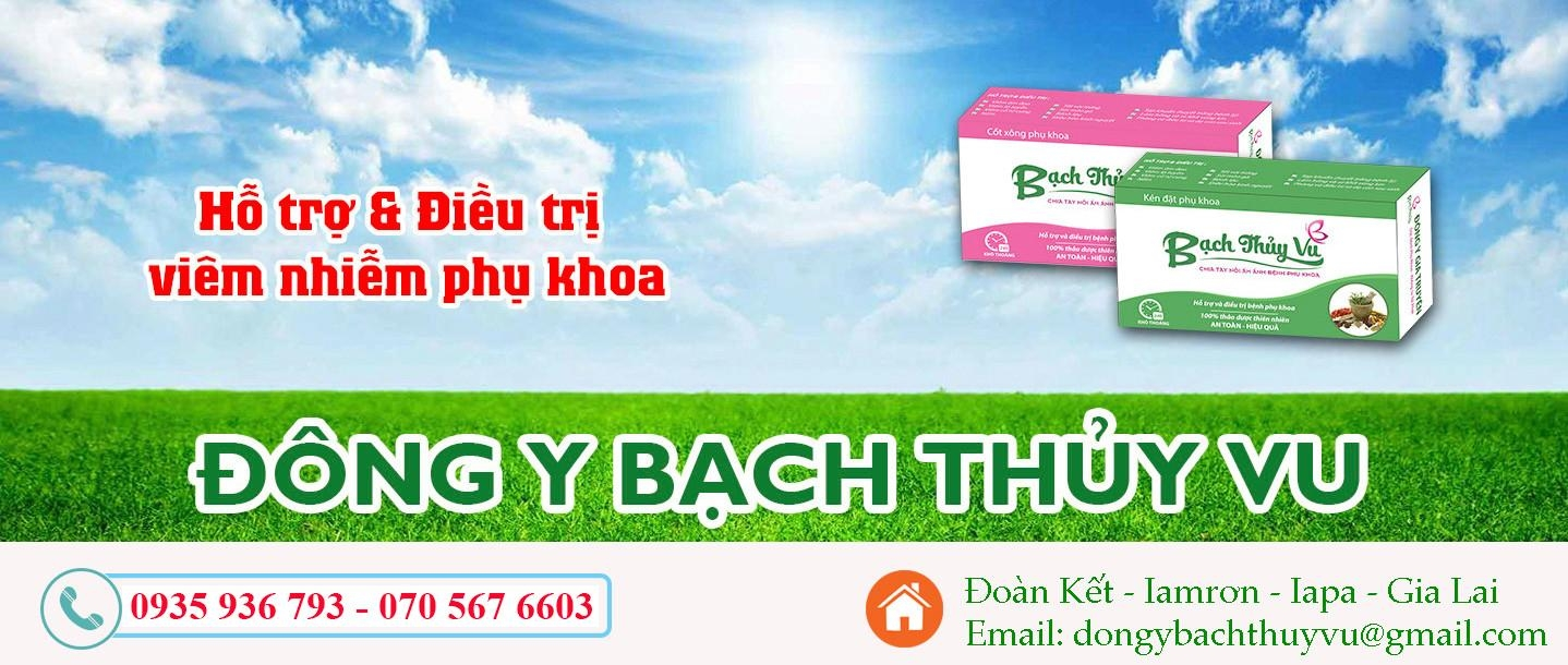 Dong Y Bach Thuy Vu (@bachthuyvu) Cover Image