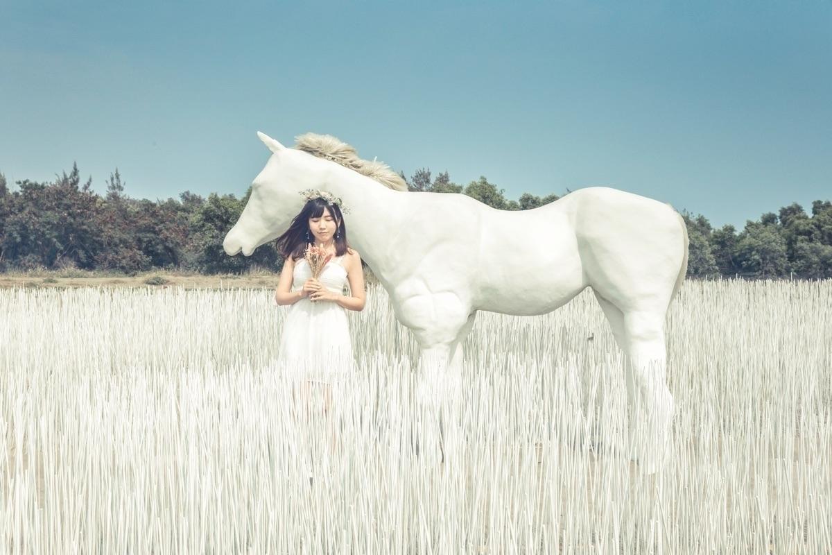 李小A (Amy Li) (@amyyliiii) Cover Image