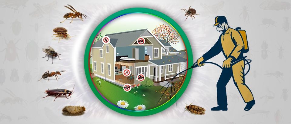 Get Pest Control (@getpestcontrol) Cover Image