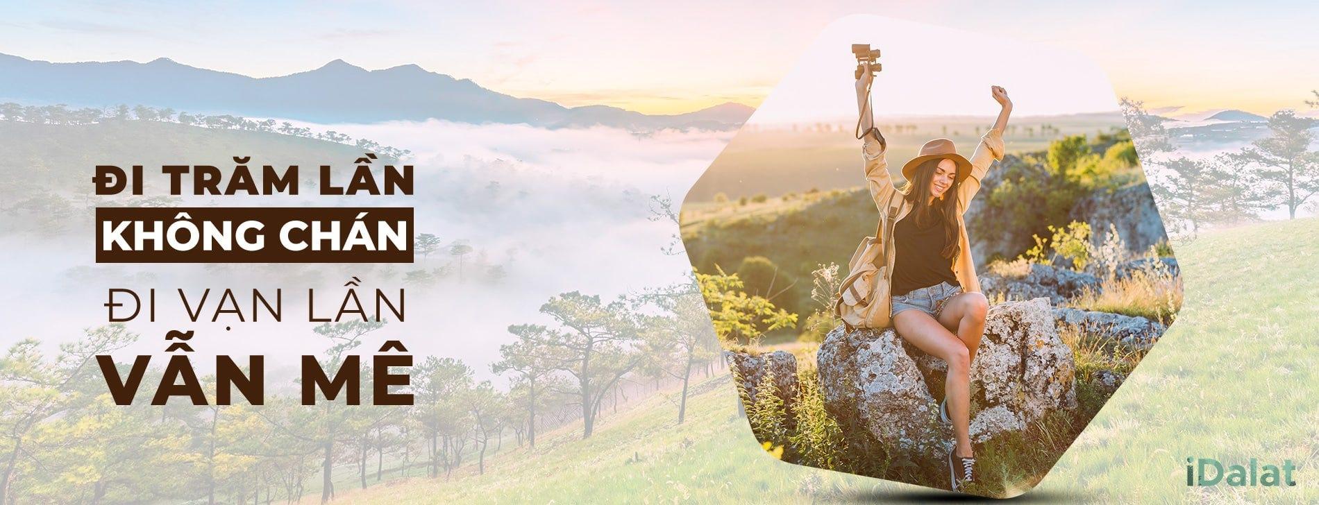 iDalat.vn - Khám phá Đà Lạt (@idalat) Cover Image
