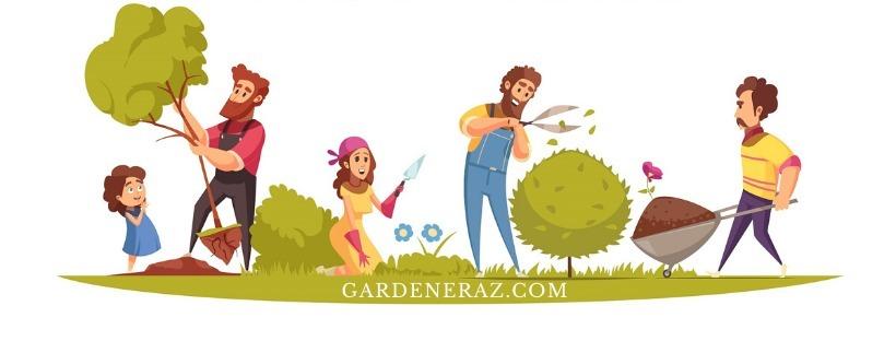 GardenerAZ (@gardeneraz) Cover Image