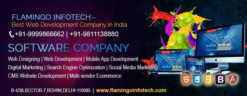 Flamingo Infotech (@flamingoinfotechdelhi) Cover Image