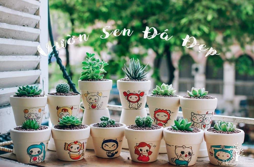 Vườn Cây Xinh (@vuoncayxinh) Cover Image