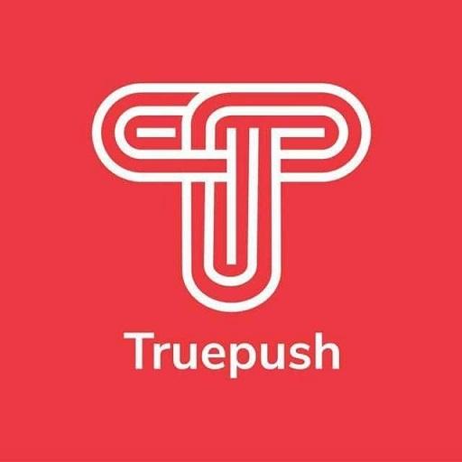 T (@truepush) Cover Image