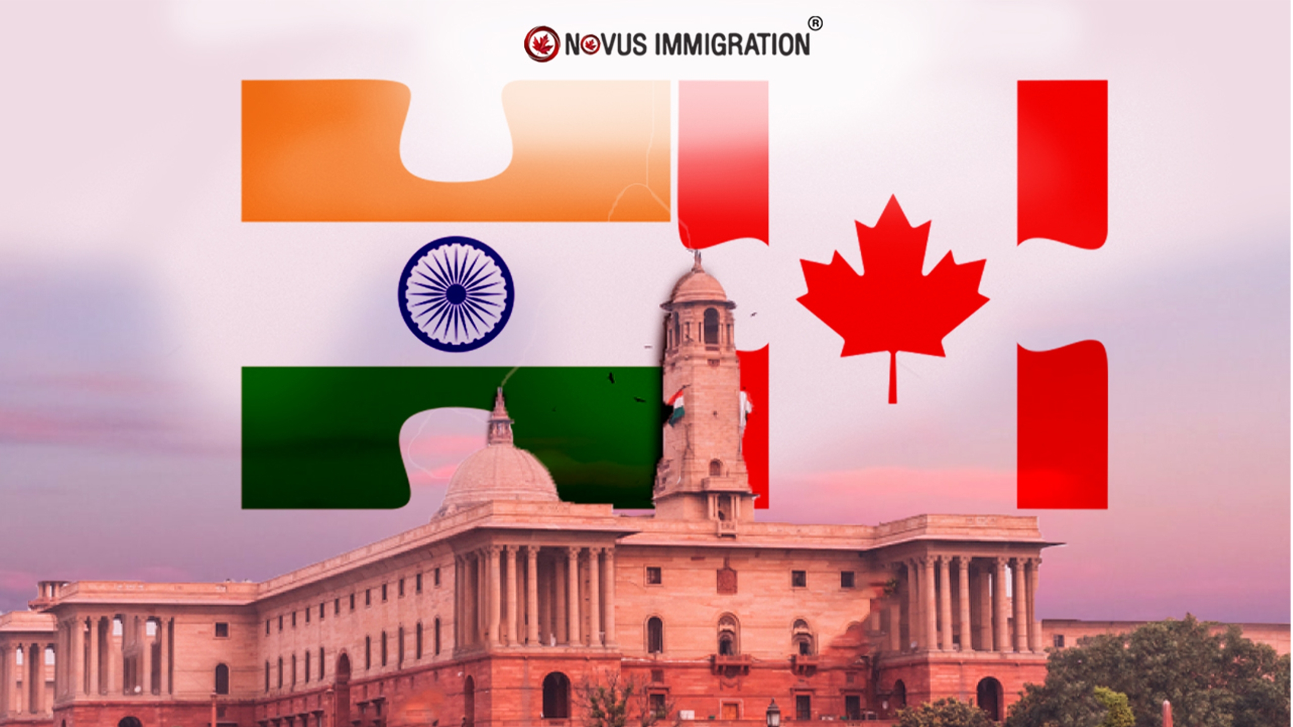 Novusimmigration Delhi (@novusimmigrationdelhi) Cover Image