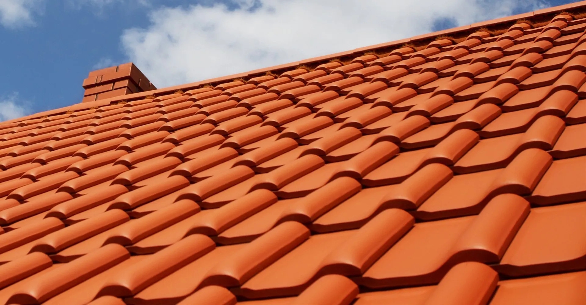 Ants Roofing And Building Maintenance (@antsroofing) Cover Image