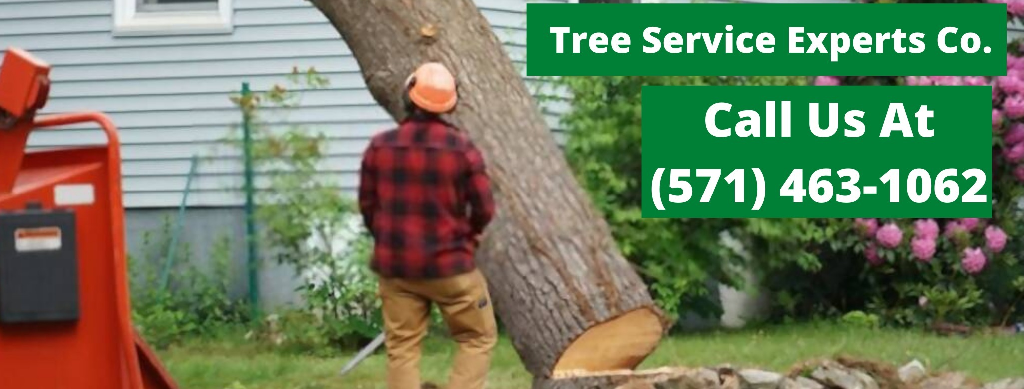 Tree Service Experts Co. (@treeserviceexpertsco) Cover Image