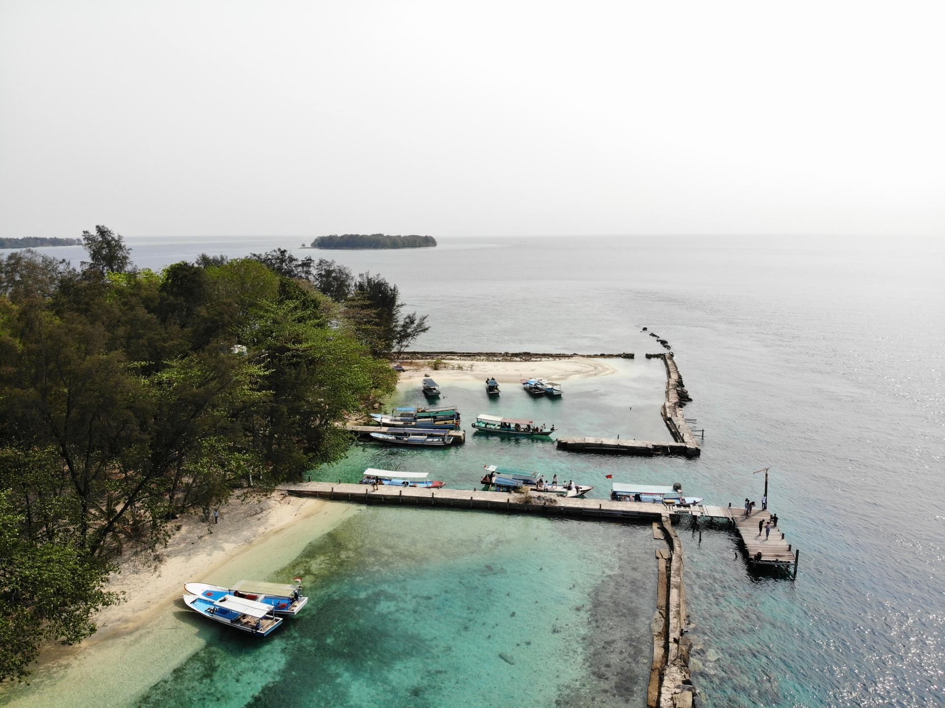 bibit ikan nila lele di manado (@bibitikannilaleledimanado) Cover Image