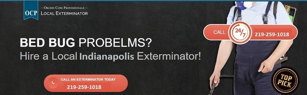 OCP Bed Bug Exterminator Indianapolis (@ocpbedbugexterminatorindianapolis) Cover Image