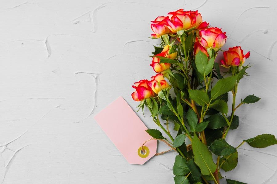 Beverly Hills Flower Gallery (@beverlyhillsflowerga) Cover Image