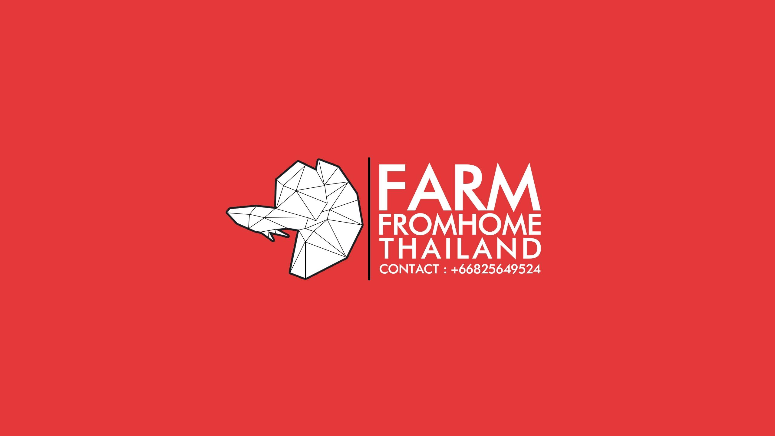 FarmFromHomeThailand (@farmfromhomethailand) Cover Image