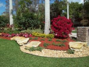 Coral Springs Nursery (@coralspringsnursery) Cover Image