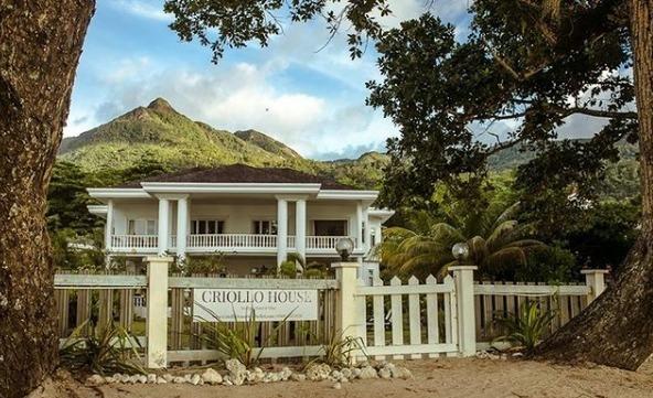 Criollo House (@criollohouse) Cover Image