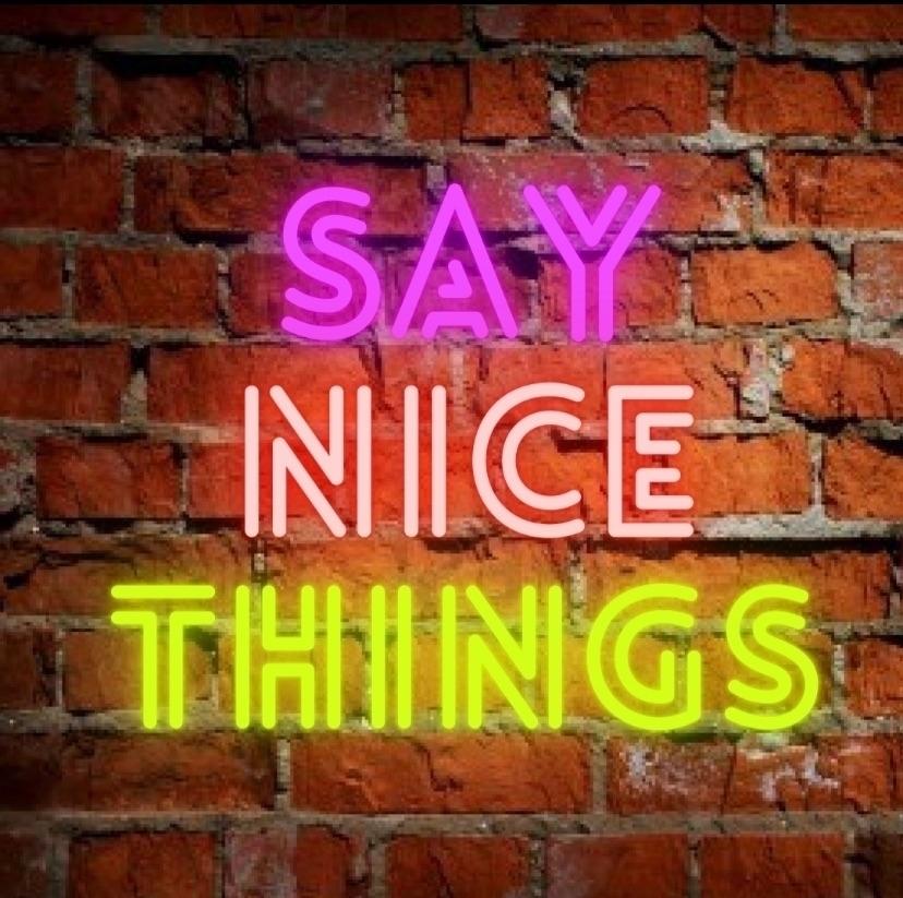 Say Nice Things  (@saynicethingstv) Cover Image