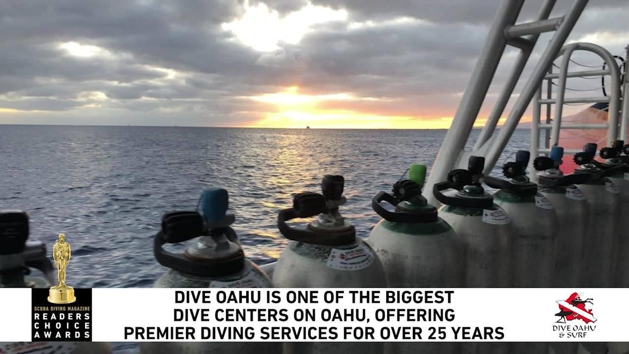 Dive Oahu (@diveoahu) Cover Image