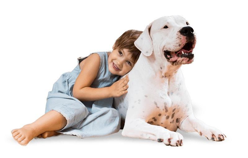 Wallys World of Dogs: Long Island Dog Training (@wallysworldny) Cover Image