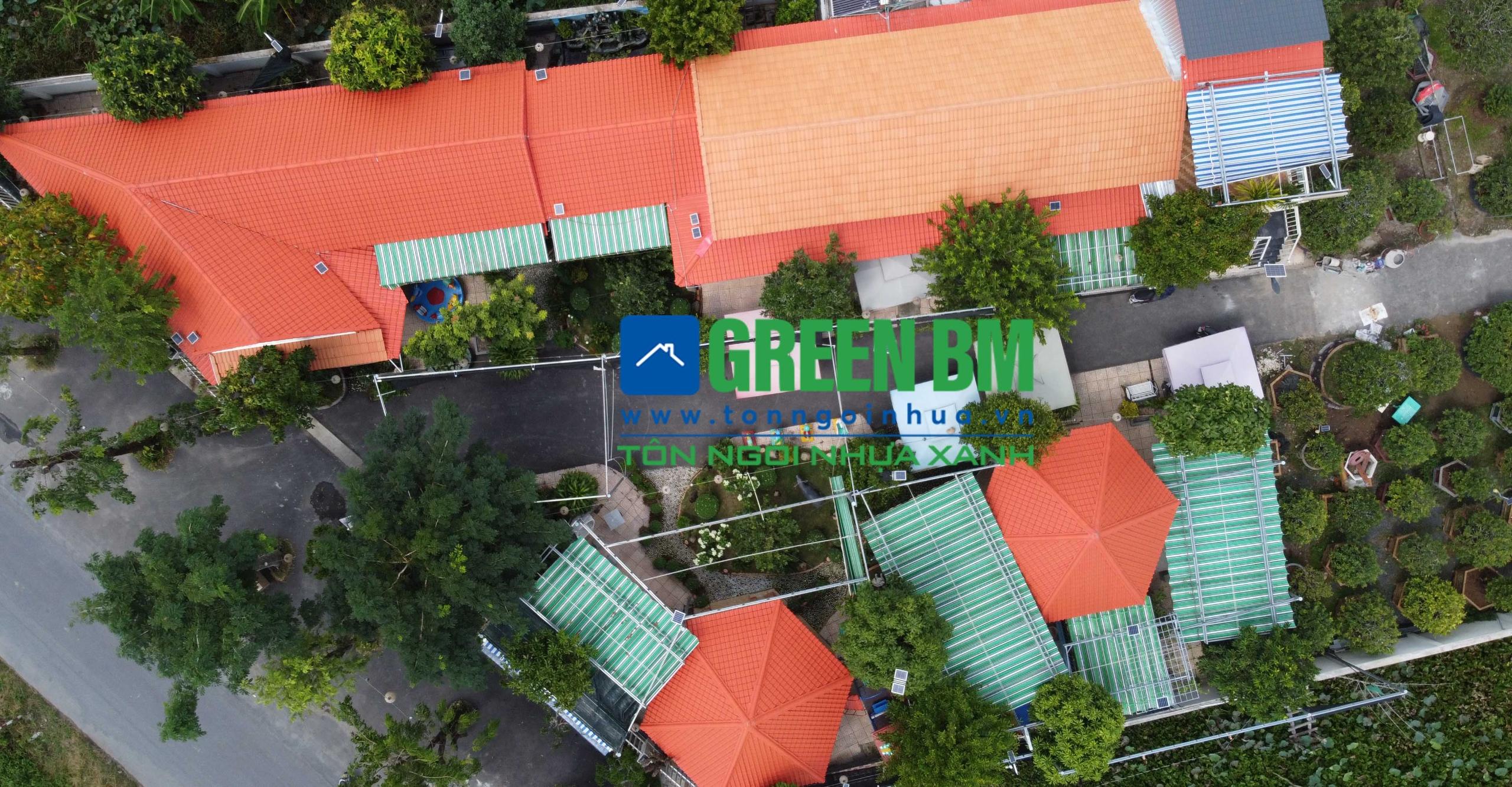 tonngoinhua (@tonngoinhua) Cover Image