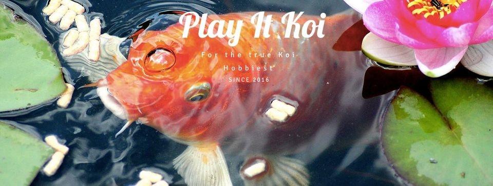 Play It Koi (@playitkoi) Cover Image