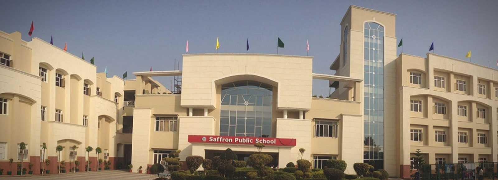 Saffron School (@saffron_school) Cover Image