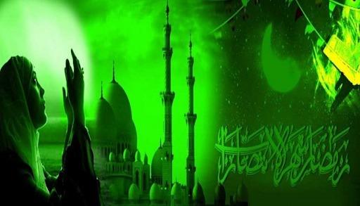 (@molviwahidji) Cover Image